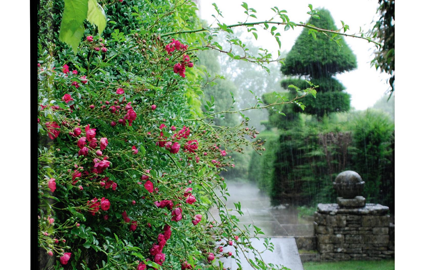 Bok: Engelska trädgårdar