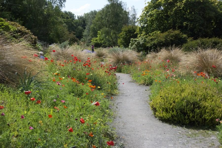 Blogg: Bilder från Garden house, Devon, sydvästra England