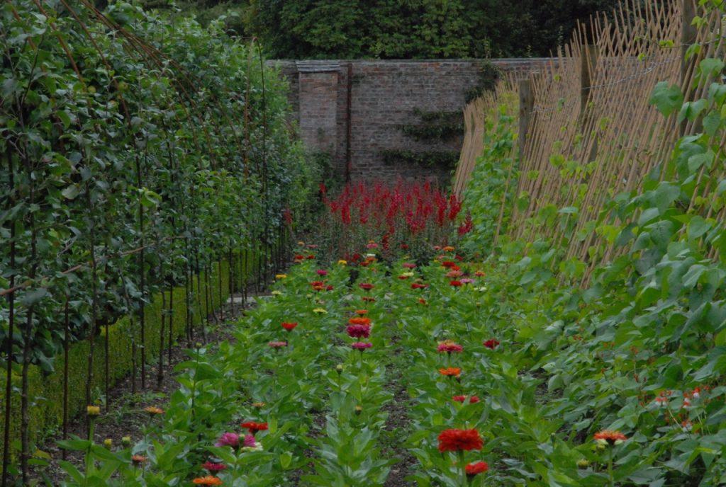 heligan, köksträdgård, england, ann larås, trädgårdsturisten, cornwall